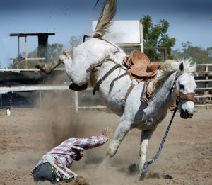dangers of horseback riding, bronc riding dangers