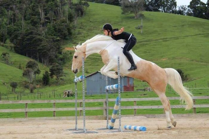 Do horses like to be ridden? Alycia Burton jumping her horse bareback and without a bridle proves they can