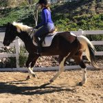 Becky riding Stanley... even good riders sometimes worry that they are a bad horseback rider