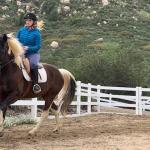 riding horses 1 month pregnant, riding horses 2 months pregnant